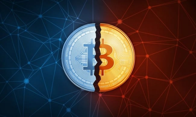 the bitcoin halving is coming