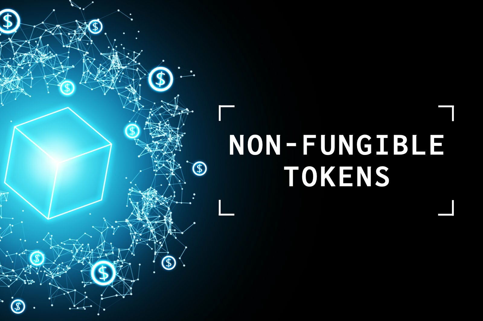 complete look non fungible tokens nft