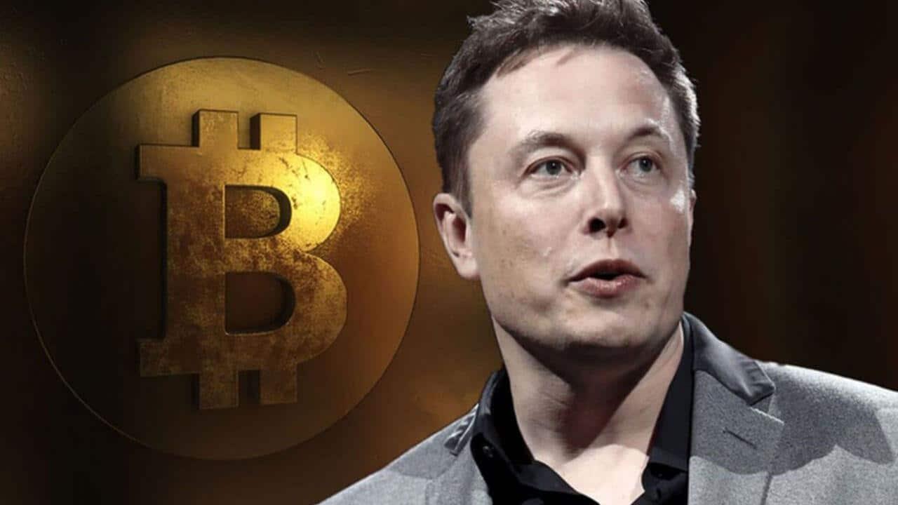 elon musk bitcoin 1516334