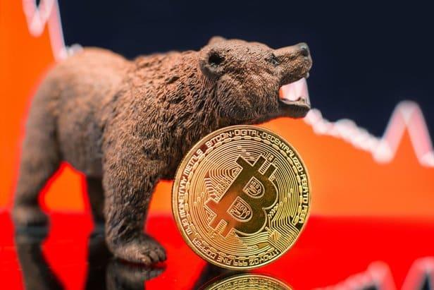 on-chain analisti willy woo'ya göre, bitcoin boğa ve ayı döngüleri geçmişte kalacak! 22