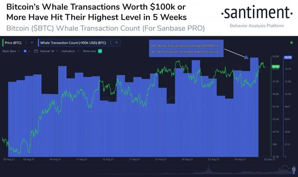 bitcoin piyasasında baline hareketliliği arttı! 24