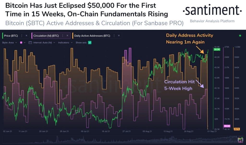bitcoin piyasasında baline hareketliliği arttı! 26