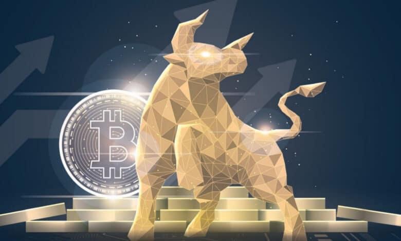 kriptoup bitcoin ethereum boga yukselis
