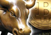 kriptoup boga bitcoin